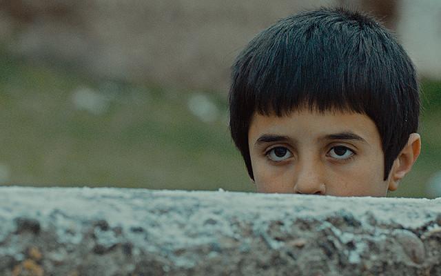 シーヴァス 王子さまになりたかった少年と負け犬だった闘犬の物語の映画評論・批評