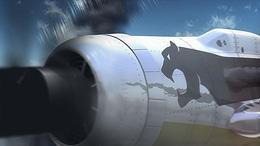 空中戦およびレシプロ戦闘機の描き込みは実写以上