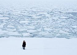 35ミリフィルムに収められた壮大な流氷の美しさ