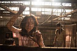 人身売買の実態も暴く社会派ストーリー