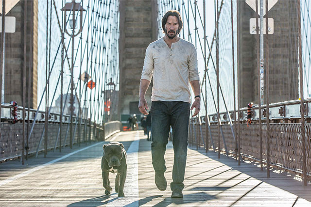 今作で登場する相棒は、ちょっとコワモテ! ジョン・ウィックの「愛犬」も気になる
