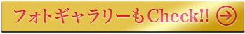 第88回アカデミー賞特集(2016年)フォトギャラリー