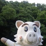猪名川のキンさん