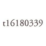 t16180339