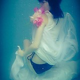 anemone_hi-lite