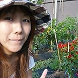 Masako Kawaguchi