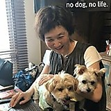Nao Ikebe