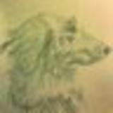 contrex_box