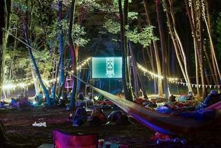 一夜限りの野外映画フェス「夜空と交差する森の映画祭2018」で「秒速5センチメートル」上映