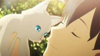 全編猫づくしの「泣きたい私は猫をかぶる」特別映像公開