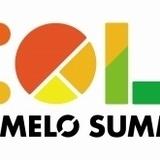 「アニサマ2020」延期 21年8月27~29日開催を目指し調整