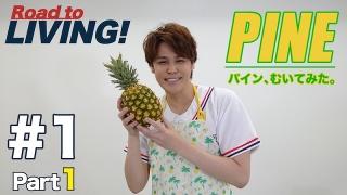 宮野真守、「パインむいてみた」動画をYouTubeチャンネルで公開