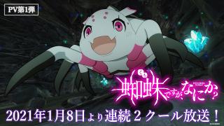 「蜘蛛ですが、なにか?」堀江瞬、東山奈央らメインキャストや主題歌、放送スケジュール発表