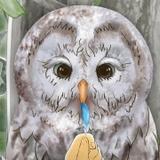 短編アニメ「青い羽みつけた!」追加キャストに綿貫竜之介&木村良平