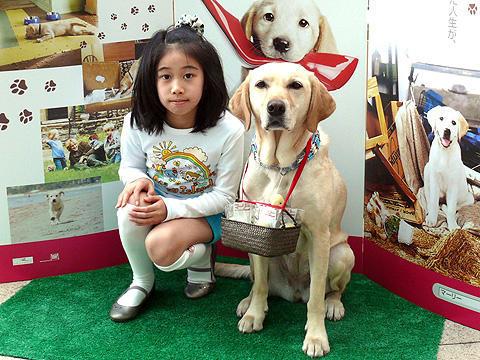 """全米感動作「マーリー」イベントに、愛らしいラブラドール犬が""""派犬"""""""