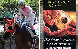 スパイダーマンのメンコを装着した馬(左)と 場内に設置されていた看板(写真:照屋盛義)「スパイダーマン」