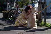 「犬と私の10の約束」で田中麗奈とあなたの愛犬が共演?