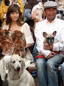 川島なお美「犬を飼うと恋人ができる!」。「犬と私の10の約束」試写会