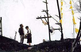 「幸福の黄色いハンカチ デジタルリマスター」「シュアリー・サムデイ」