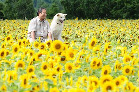 2011年夏はおとうさんとハッピーに日本が泣く