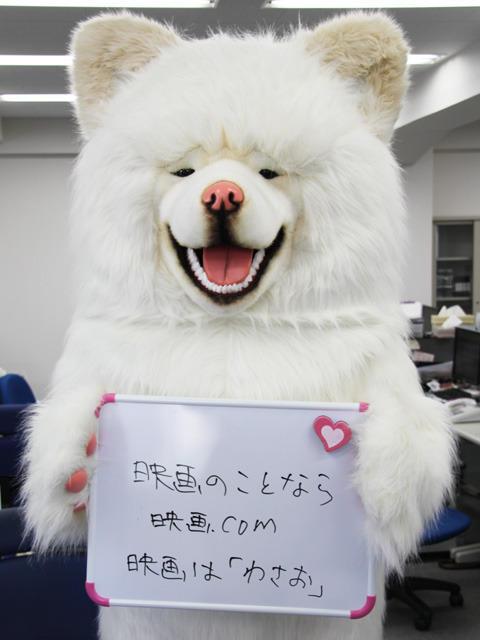 """映画「わさお」宣伝担当""""わさちゃん""""、映画.com編集部で熱烈PR"""