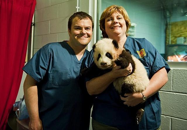 """「カンフー・パンダ2」 ジャック・ブラックが赤ちゃんパンダを""""ポー""""と命名"""