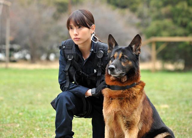戸田恵梨香「DOG×POLICE」で使命感に燃える警察官に