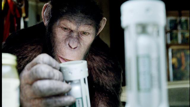 「猿の惑星」最新作、人間とサルの闘いの発端を解明