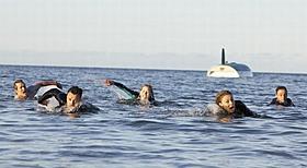 人喰いザメから逃げ惑う5人の若者「オープン・ウォーター」