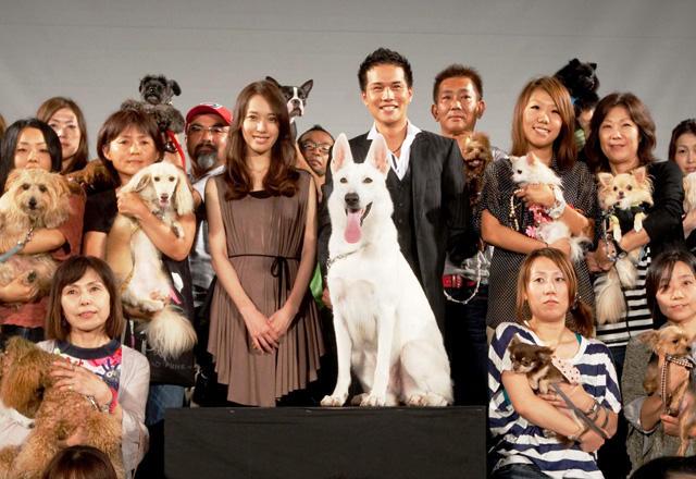 市原隼人&戸田恵梨香、犬50頭の出迎えに満面の笑み