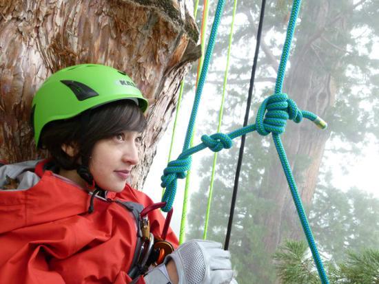 滝川クリステルが体当たりで新境地! 芸人顔負け80メートル木登り