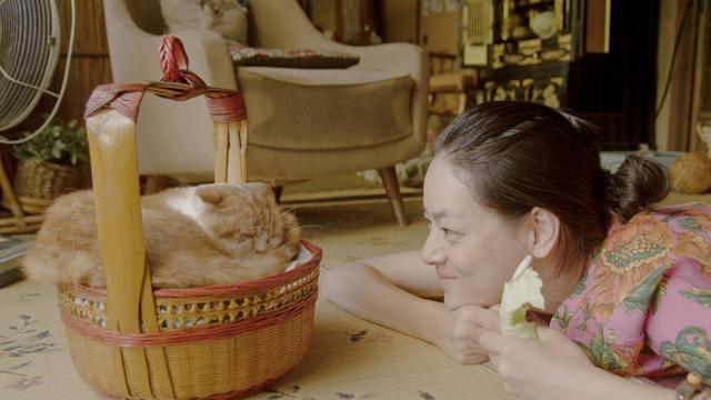 荻上直子監督、最新作「レンタネコ」で3度目のベルリン映画祭へ