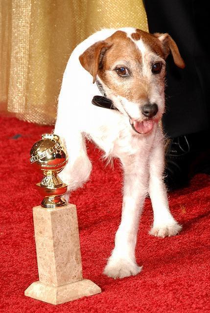 「アーティスト」に出演の俳優犬が引退 弟が引き継ぎ