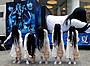 """貞子、「貞子3D2」のため""""連投""""翌日も渋谷で握手会・キャンペーンに奔走"""
