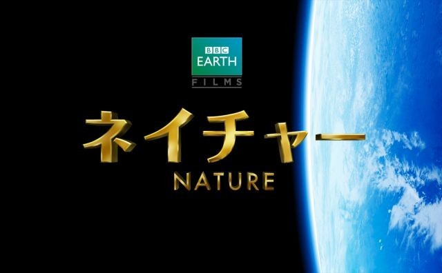 BBC製作「ネイチャー」14年GWに公開!特報で迫力の大自然を初お披露目