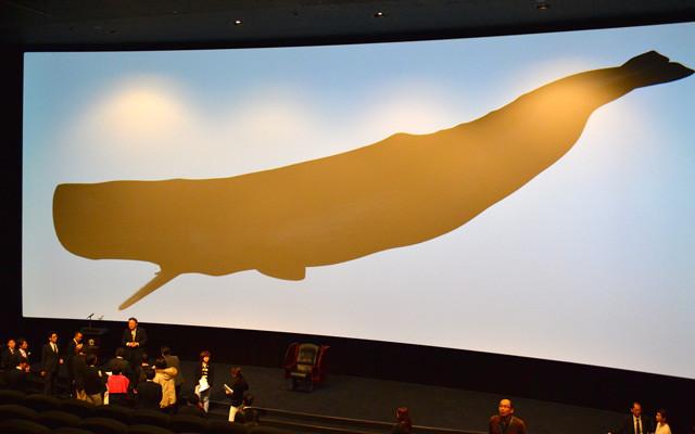マッコウクジラ1頭がすっぽり入るという 都内初の独自企画巨大スクリーン「TCX」