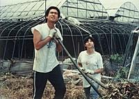 「遠雷」の一場面 (C)1981 日活/東宝