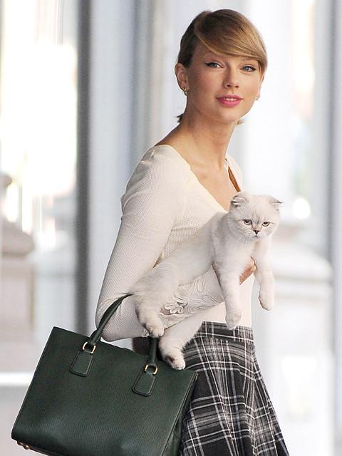 猫好きで知られるスウィフト
