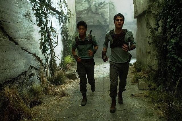 巨大迷路からの脱出描く「メイズ・ランナー」、主人公が逃げ惑う映像公開!