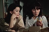 「鏡地獄の美女 江戸川乱歩の『影男』」金沢碧