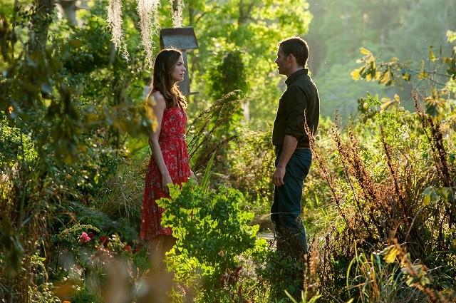 「きみに読む物語」原作者の小説を映画化「かけがえのない人」、8月公開決定