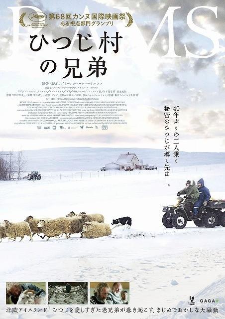 アイスランドの動物と人間の絆と愛をユーモラスに描くカンヌ受賞作「ひつじ村の兄弟」予告