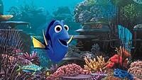 「ファインディング・ドリー」 (C)2015 Disney/Pixar. All Rights Reserved.