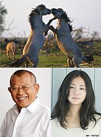 「シーズンズ」日本語版ナレーターは笑福亭鶴瓶&木村文乃「シーズンズ 2万年の地球旅行」