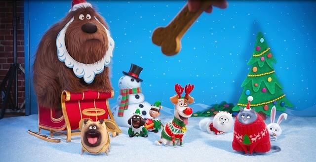 「ペット」のクリスマス限定映像が公開!主要キャラクターの名前が明らかに