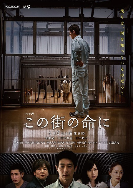 加瀬亮&戸田恵梨香共演のドラマ「この街の命に」、犬猫殺処分の悲痛な現実訴えるポスター