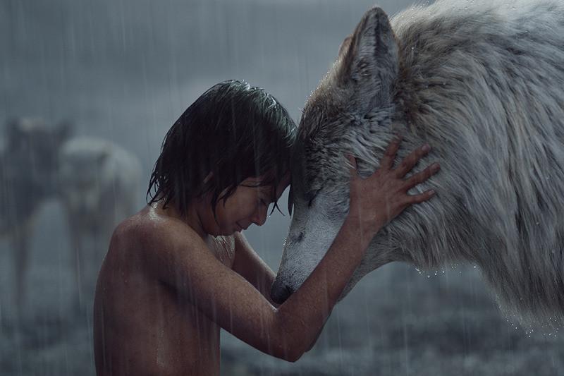 【全米映画ランキング】「ジャングル・ブック」V2 「スノーホワイト 氷の王国」は2位に