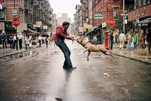 NYの15人の写真家を追うドキュメンタリー「フォトグラファーズ・イン・ニューヨーク」7月公開