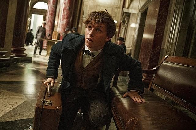 主人公はハリーと同じホグワーツ魔法魔術学校の卒業生