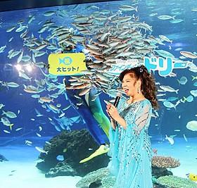 水槽の魚もヒットをお祝い!「ファインディング・ドリー」